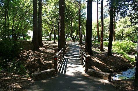 cal woods2